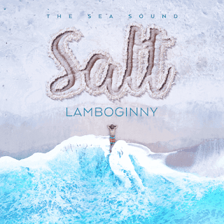 """Lamboginny Unveils Cover Art And Tracklist For New Album """"Salt"""", Features Olamide, Small doctor and others"""