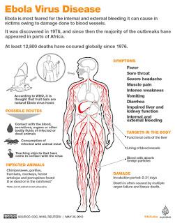 Ebola Virus Disease infographics
