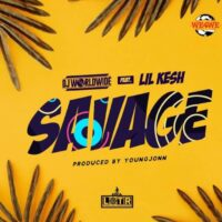 DJ Worldwide Ft Lil Kesh - Savage
