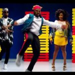 Video: Omawumi - Malowa ft DJ SPinall & Slimcase