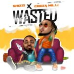 Shizzi ft Ceeza Milli - Wasted mp3 download