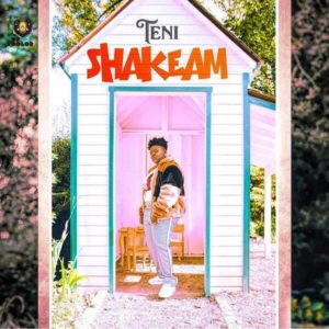 Teni - Shakeam mp3 download