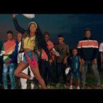DOWNLOAD VIDEO: Zlatan - Zanku (Leg Work)