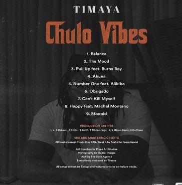 DOWNLOAD MP3: Timaya - Stoopid