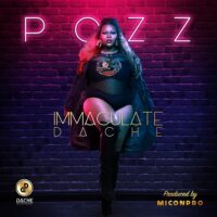 Imaculate Dache - Pozz mp3 download