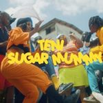 Teni - Sugar Mummy mp4 download