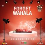 'Forget Wahala' - Big Brother Teases Fans with Theme For 2019 Edition