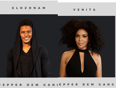BBNAIJA 2019: Meet The Two New Housemates, Venita & Elozonam | Profile | Pictures