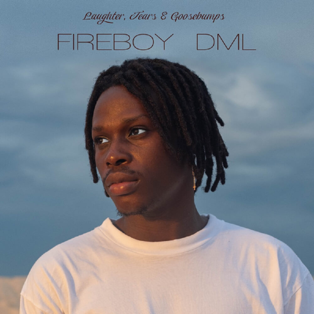 DOWNLOAD MP3: Fireboy DML- Need You