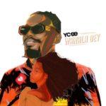DOWNLOAD MP3: Ycee - Wahala Dey