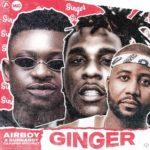 Airboy - Ginger Ft. Burna Boy, Casper Nyovest Mp3 Download