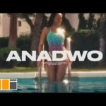VIDEO: Sarkodie - Anadwo Ft. King Promise