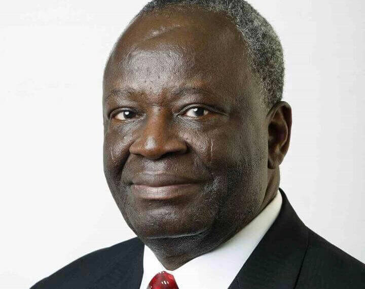 Ibrahim Gambari Biography: Age, Wife, Family, Religion, History & Pictures