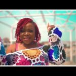VIDEO: Omawumi - Lituation Ft. Philkeyz Mp4