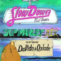 Download Skip Marley & H.E.R - Slow Down (Remix) Ft. Davido, Oxlade Mp3