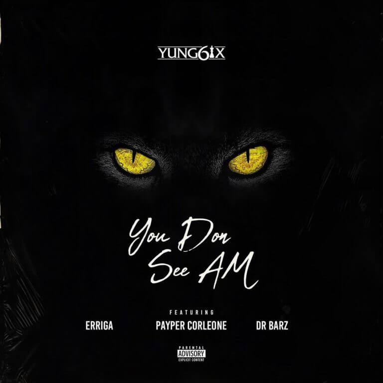 Download Yung6ix - You Don See Am Ft. Erigga, Payper Corleone, Dr Barz Mp3