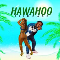 Download Slimcase - Hawahoo Mp3