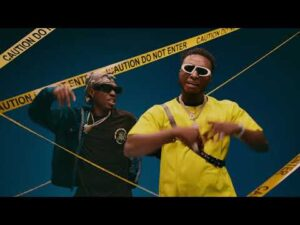 VIDEO: DJ Kaywise - What Type Of Dance (WTOD) Ft. Mayorkun, Naira Marley, Zlatan MP4 Download