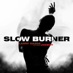 Download Larry Gaaga - Slow Burner Ft. Joeboy Mp3