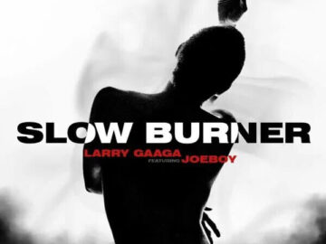 Download Larry Gaaga - Slow Burner Ft. Joeboy Mp3