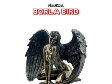 Download Medikal - Borla Bird Mp3