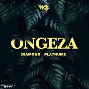 DOWNLOAD Diamond Platnumz - Ongeza MP3
