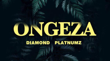 DOWNLOAD Diamond Platnumz - Ongeza MP3