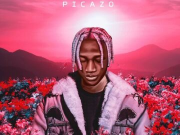 DOWNLOAD Picazo - Rest of Mind MP3