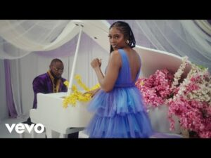 VIDEO: Tiwa Savage - Park Well Ft. Davido MP4 download