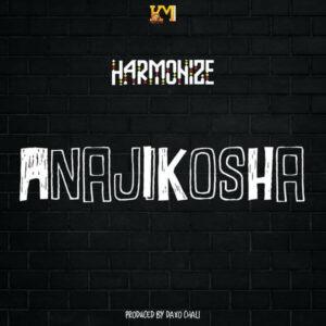 DOWNLOAD Harmonize - Anajikosha MP3