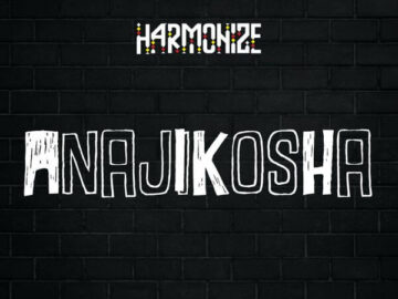DOWNLOAD Harmonize - Anajikosha MP3