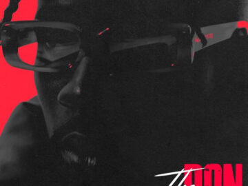 DOWNLOAD Mr Eazi - The Don MP3